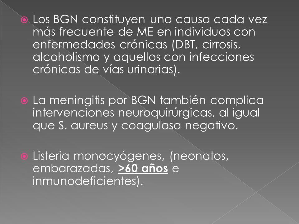 Los BGN constituyen una causa cada vez más frecuente de ME en individuos con enfermedades crónicas (DBT, cirrosis, alcoholismo y aquellos con infeccio