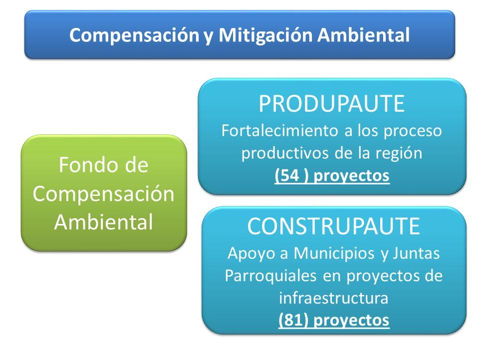 Compensación y Mitigación Ambiental Fondo de Compensación Ambiental PRODUPAUTE Fortalecimiento a los proceso productivos de la región (54 ) proyectos