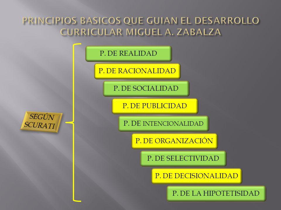 P.DE REALIDAD P. DE SOCIALIDAD P. DE RACIONALIDAD P.