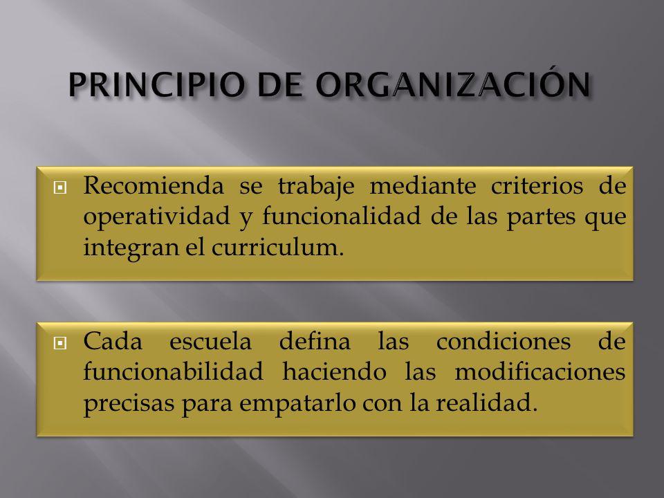 Recomienda se trabaje mediante criterios de operatividad y funcionalidad de las partes que integran el curriculum.