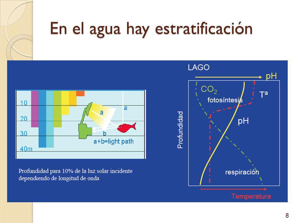 Posibilidad de vida sésil El agua conduce: Nutrientes (alimentos) Evacúa desechos Gametos Oxígeno 9