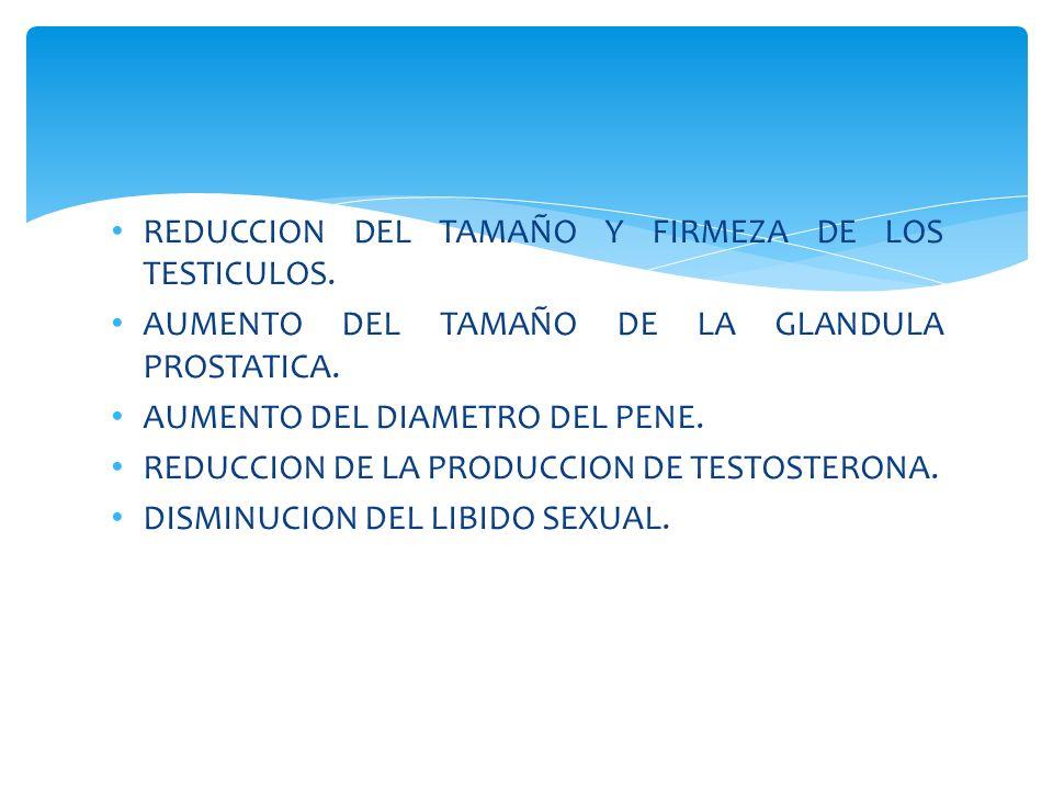 REDUCCION DEL TAMAÑO Y FIRMEZA DE LOS TESTICULOS. AUMENTO DEL TAMAÑO DE LA GLANDULA PROSTATICA. AUMENTO DEL DIAMETRO DEL PENE. REDUCCION DE LA PRODUCC