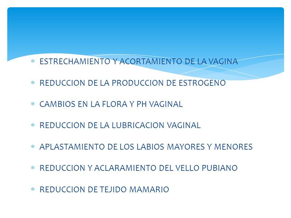 ESTRECHAMIENTO Y ACORTAMIENTO DE LA VAGINA REDUCCION DE LA PRODUCCION DE ESTROGENO CAMBIOS EN LA FLORA Y PH VAGINAL REDUCCION DE LA LUBRICACION VAGINAL APLASTAMIENTO DE LOS LABIOS MAYORES Y MENORES REDUCCION Y ACLARAMIENTO DEL VELLO PUBIANO REDUCCION DE TEJIDO MAMARIO