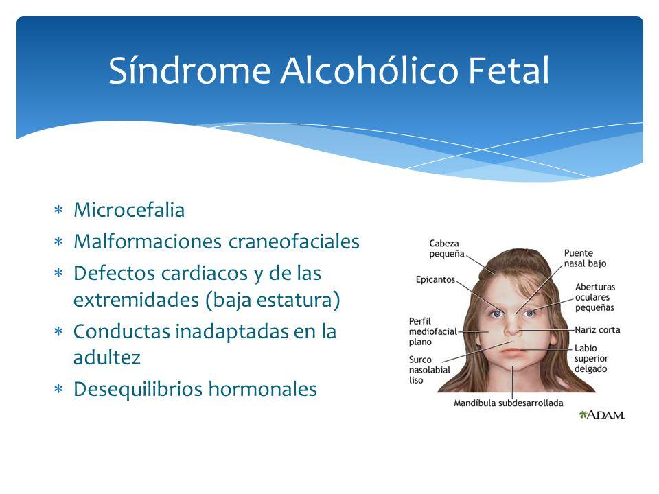 Microcefalia Malformaciones craneofaciales Defectos cardiacos y de las extremidades (baja estatura) Conductas inadaptadas en la adultez Desequilibrios
