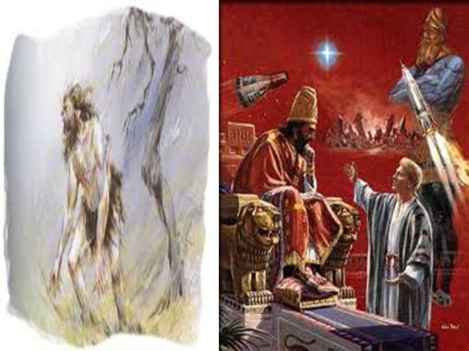 Dan 4:15 «Tal es el sueño que he tenido yo, el rey Nabucodonosor.