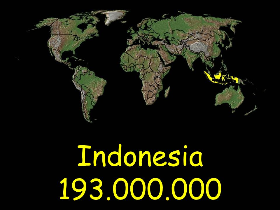 Indonesia 193.000.000