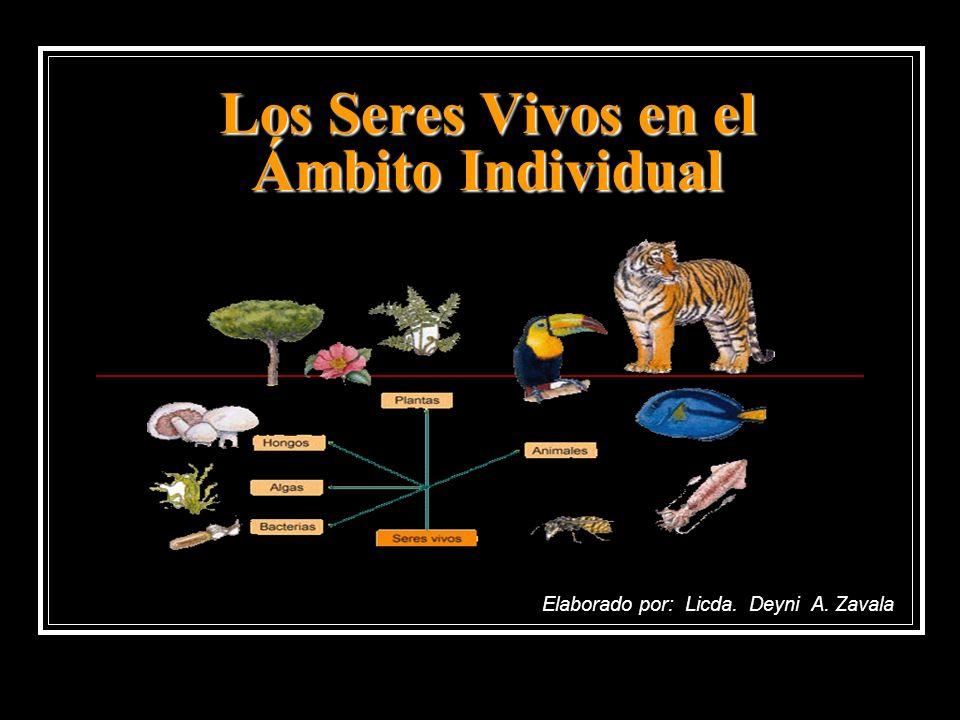 Los Seres Vivos en el Ámbito Individual Elaborado por: Licda. Deyni A. Zavala