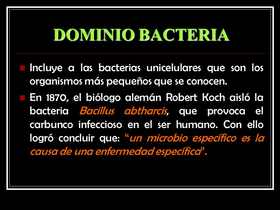 DOMINIO BACTERIA Incluye a las bacterias unicelulares que son los organismos más pequeños que se conocen. En 1870, el biólogo alemán Robert Koch aisló