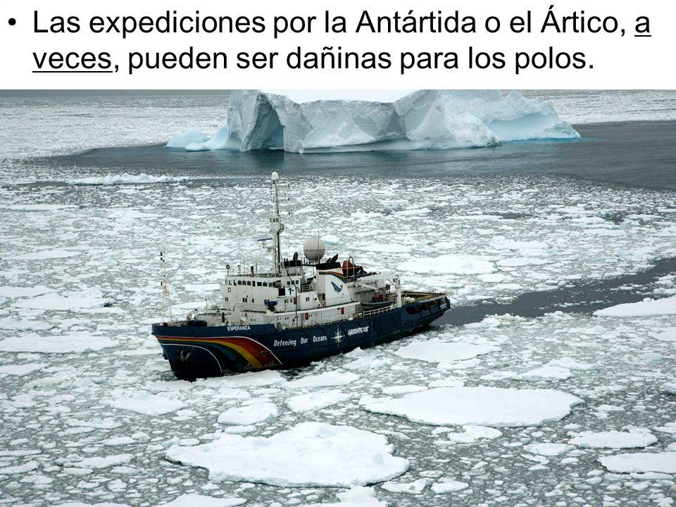 Micro LERJ Las expediciones por la Antártida o el Ártico, a veces, pueden ser dañinas para los polos.