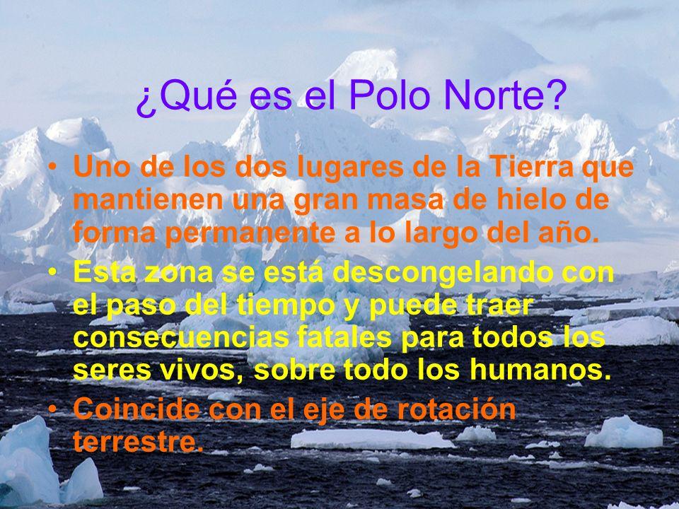 ¿Qué es el Polo Norte? Uno de los dos lugares de la Tierra que mantienen una gran masa de hielo de forma permanente a lo largo del año. Esta zona se e