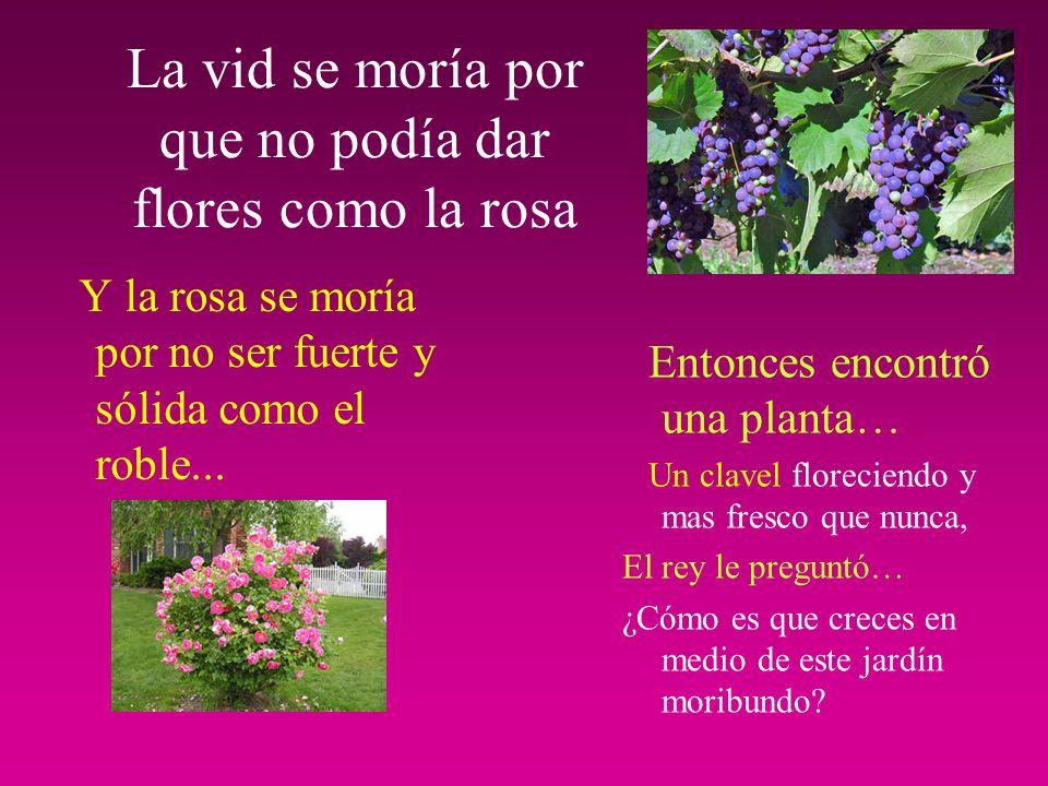 La vid se moría por que no podía dar flores como la rosa Y la rosa se moría por no ser fuerte y sólida como el roble...