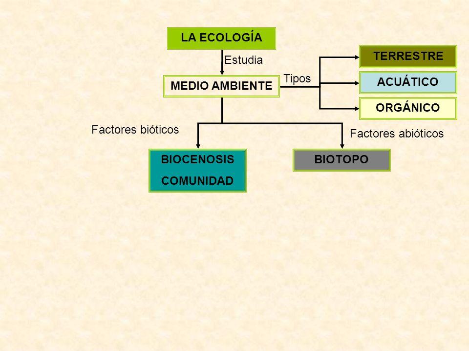 LA ECOLOGÍA MEDIO AMBIENTE Estudia ACUÁTICO TERRESTRE ORGÁNICO Tipos BIOTOPOBIOCENOSIS COMUNIDAD Factores bióticos Factores abióticos