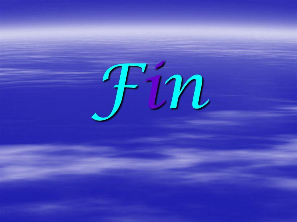 FinFinFinFin