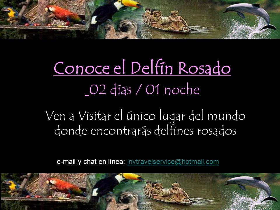 Conoce el Delfín Rosado 02 días / 01 noche Ven a Visitar el único lugar del mundo donde encontrarás delfines rosados e-mail y chat en línea: invtravel