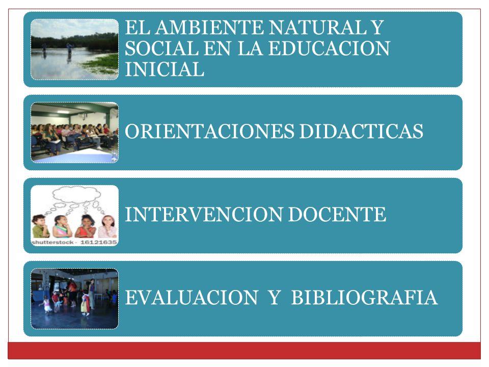 EL AMBIENTE NATURAL Y SOCIAL EN LA EDUCACION INICIAL ORIENTACIONES DIDACTICAS INTERVENCION DOCENTE EVALUACION Y BIBLIOGRAFIA