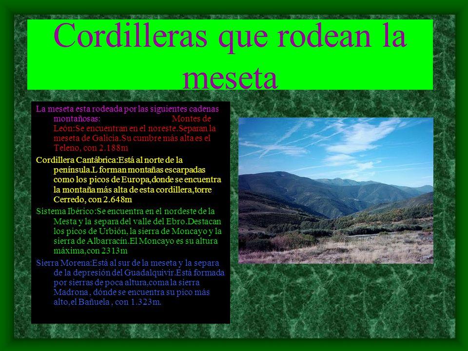 Cordilleras que rodean la meseta La meseta esta rodeada por las siguientes cadenas montañosas: Montes de León:Se encuentran en el noreste.Separan la meseta de Galicia.Su cumbre más alta es el Teleno, con 2.188m Cordillera Cantábrica:Está al norte de la península.L forman montañas escarpadas como los picos de Europa,donde se encuentra la montaña más alta de esta cordillera,torre Cerredo, con 2.648m Sistema Ibérico:Se encuentra en el nordeste de la Mesta y la separa del valle del Ebro.Destacan los picos de Urbión, la sierra de Moncayo y la sierra de Albarracín.El Moncayo es su altura máxima,con 2313m Sierra Morena:Está al sur de la meseta y la separa de la depresión del Guadalquivir.Está formada por sierras de poca altura,coma la sierra Madrona, dónde se encuentra su pico más alto,el Bañuela, con 1.323m.