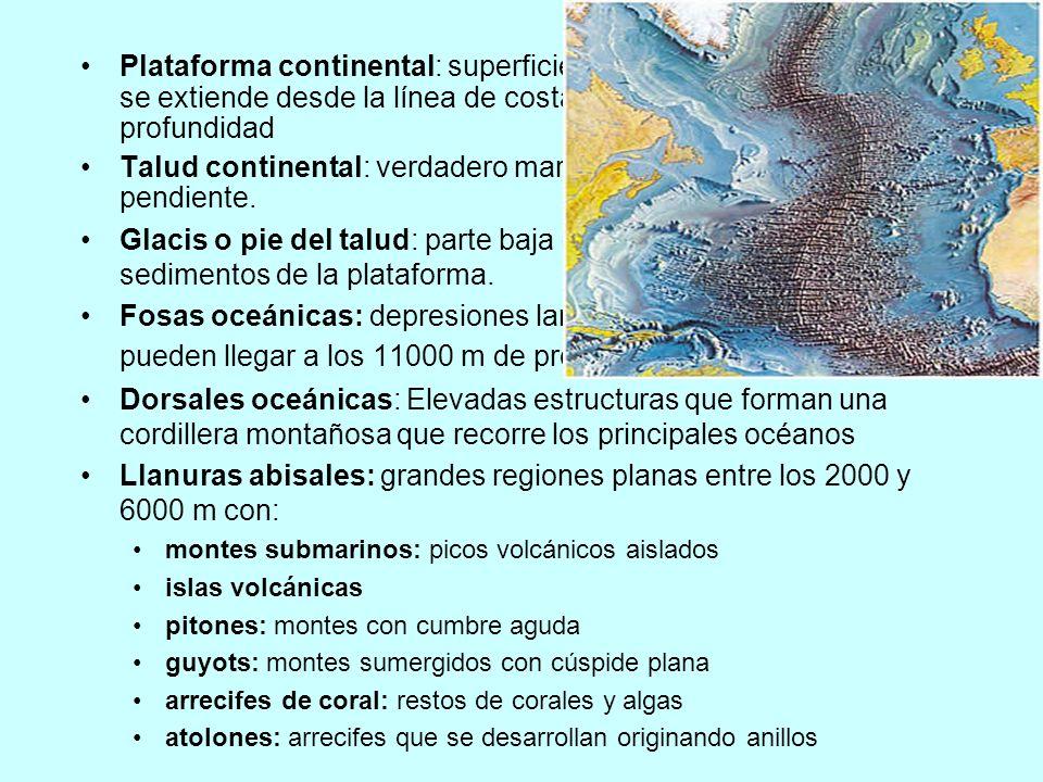 FUERZAS - Energía solar - mayor latitud mayor inclinación rayos y menor Tª - a menor latitud rayos verticales y mayor Tª Desequilibrio térmico se compensa Flujo de energía de lugares cálidos a lugares fríos (células convectivas), lo que provoca el desplazamiento de corrientes de agua y de aire.