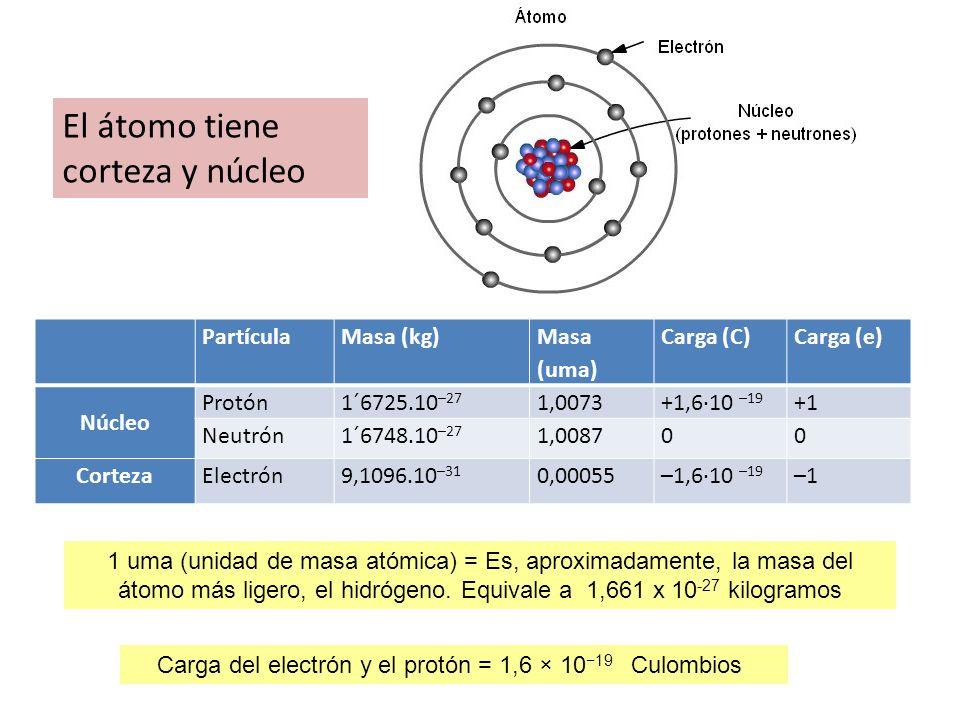 1 uma (unidad de masa atómica) = Es, aproximadamente, la masa del átomo más ligero, el hidrógeno. Equivale a 1,661 x 10 -27 kilogramos El átomo tiene