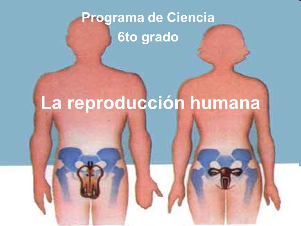 El sistema reproductor humano La reproducción humana Programa de Ciencia 6to grado