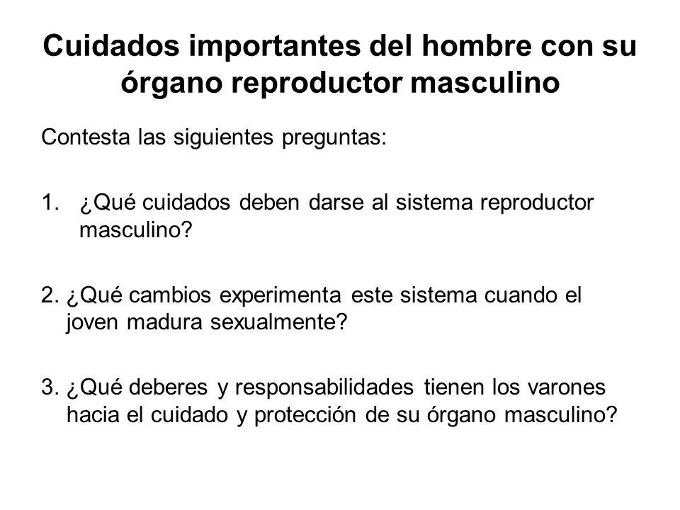Cuidados importantes del hombre con su órgano reproductor masculino Contesta las siguientes preguntas: 1.¿Qué cuidados deben darse al sistema reproduc