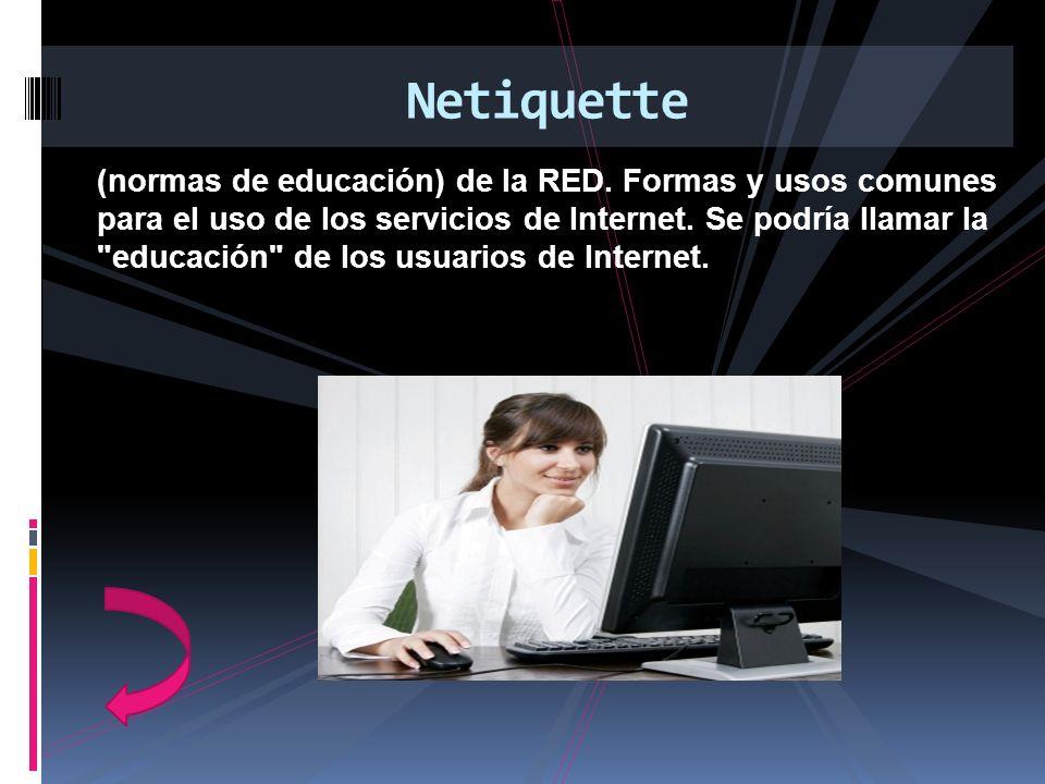 (normas de educación) de la RED. Formas y usos comunes para el uso de los servicios de Internet. Se podría llamar la