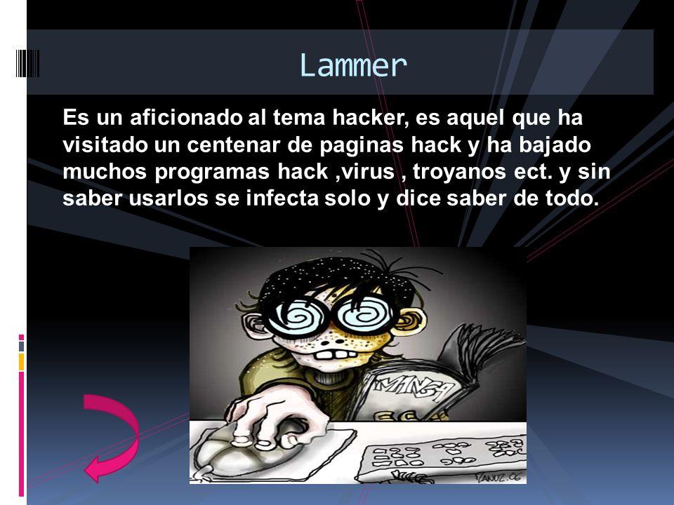 Es un aficionado al tema hacker, es aquel que ha visitado un centenar de paginas hack y ha bajado muchos programas hack,virus, troyanos ect. y sin sab