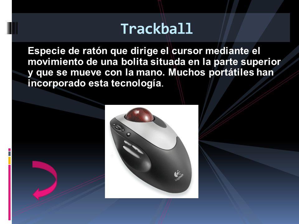 Especie de ratón que dirige el cursor mediante el movimiento de una bolita situada en la parte superior y que se mueve con la mano. Muchos portátiles