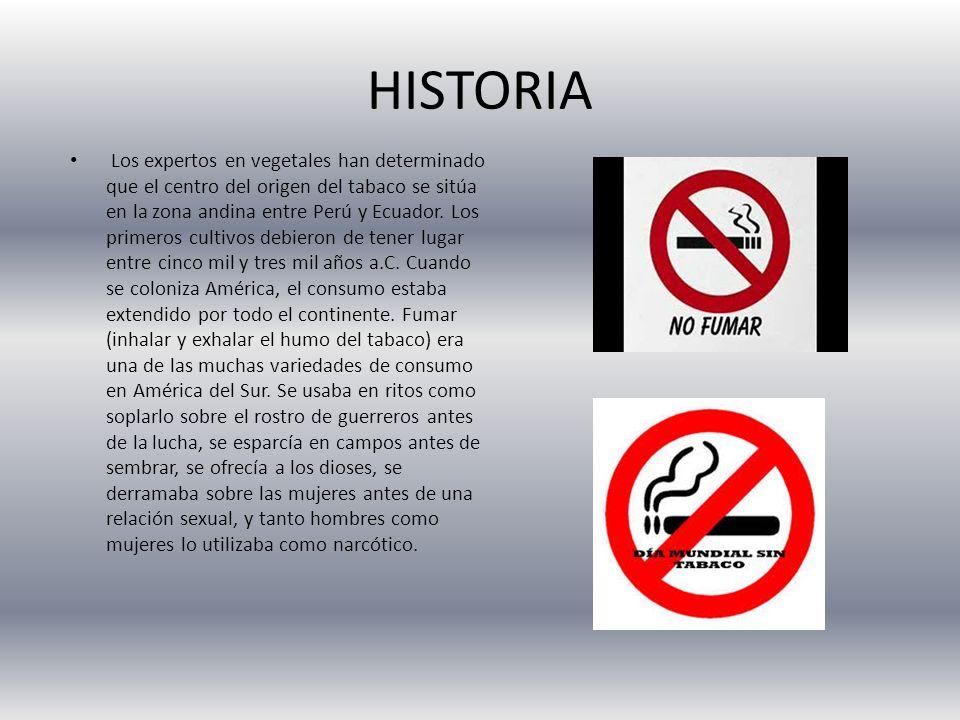 HISTORIA Los expertos en vegetales han determinado que el centro del origen del tabaco se sitúa en la zona andina entre Perú y Ecuador. Los primeros c