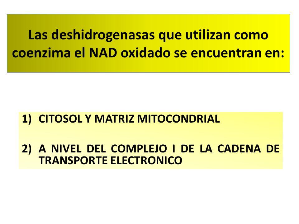 Las deshidrogenasas que utilizan como coenzima el NAD oxidado se encuentran en: 1)CITOSOL Y MATRIZ MITOCONDRIAL 2)A NIVEL DEL COMPLEJO I DE LA CADENA