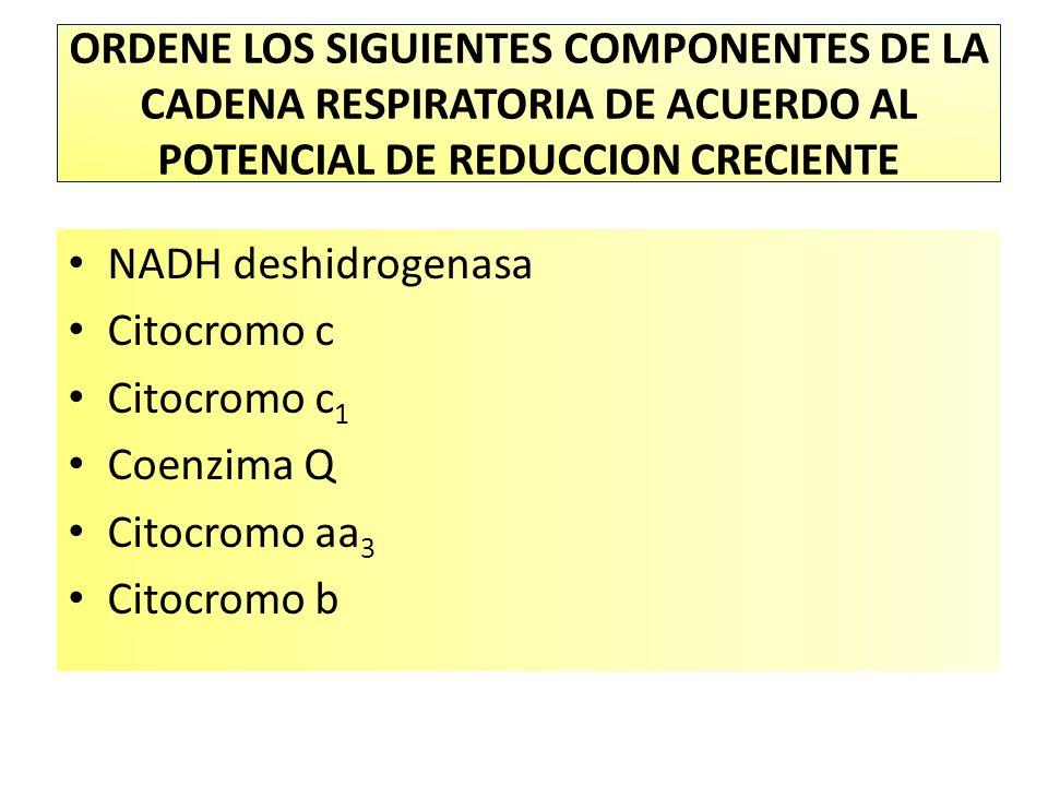 ORDENE LOS SIGUIENTES COMPONENTES DE LA CADENA RESPIRATORIA DE ACUERDO AL POTENCIAL DE REDUCCION CRECIENTE NADH deshidrogenasa Citocromo c Citocromo c 1 Coenzima Q Citocromo aa 3 Citocromo b