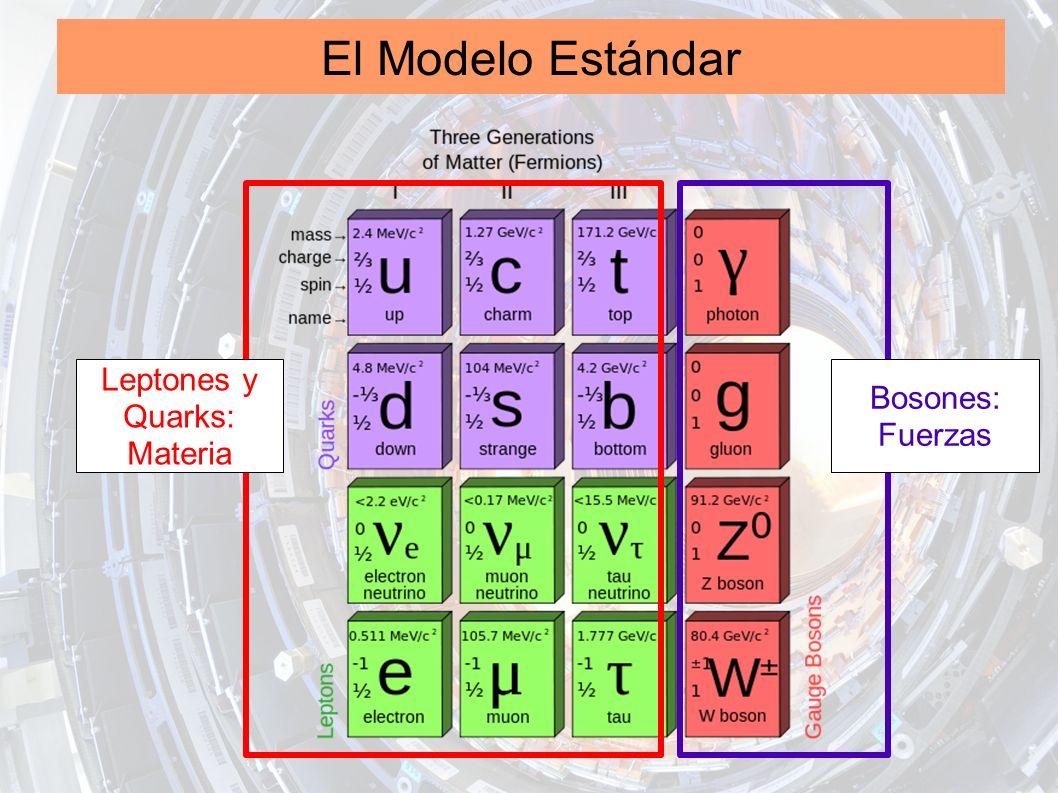 El Modelo Estándar Leptones y Quarks: Materia Bosones: Fuerzas