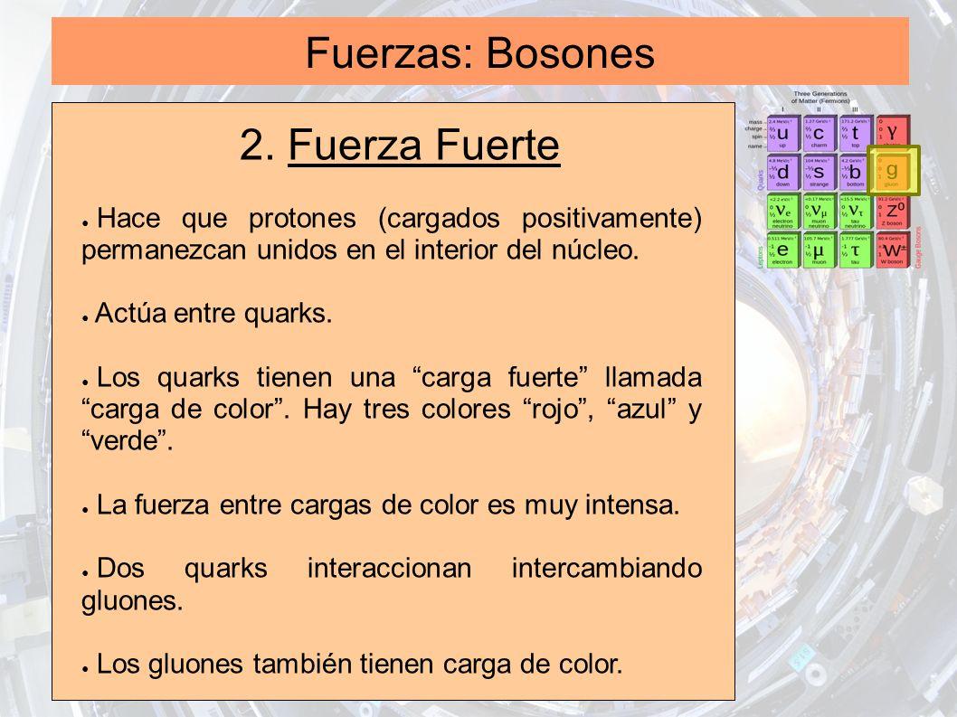 Fuerzas: Bosones 2. Fuerza Fuerte Hace que protones (cargados positivamente) permanezcan unidos en el interior del núcleo. Actúa entre quarks. Los qua