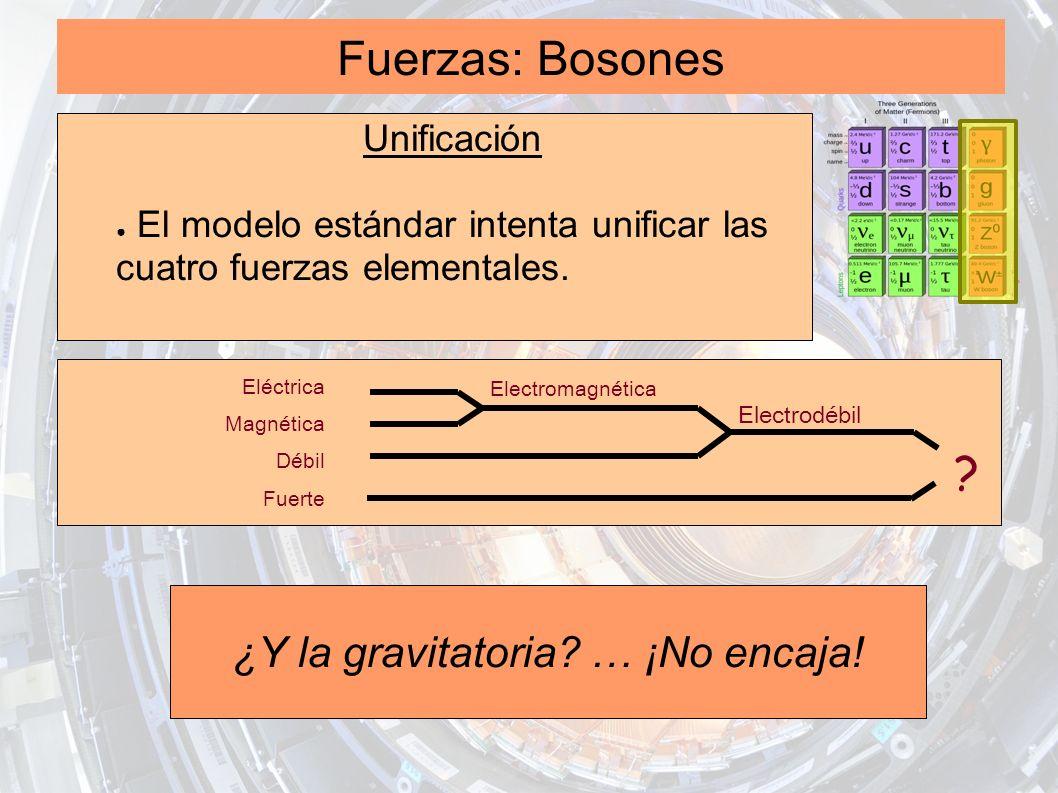 Fuerzas: Bosones Unificación El modelo estándar intenta unificar las cuatro fuerzas elementales. Eléctrica Magnética Débil Fuerte Electromagnética Ele