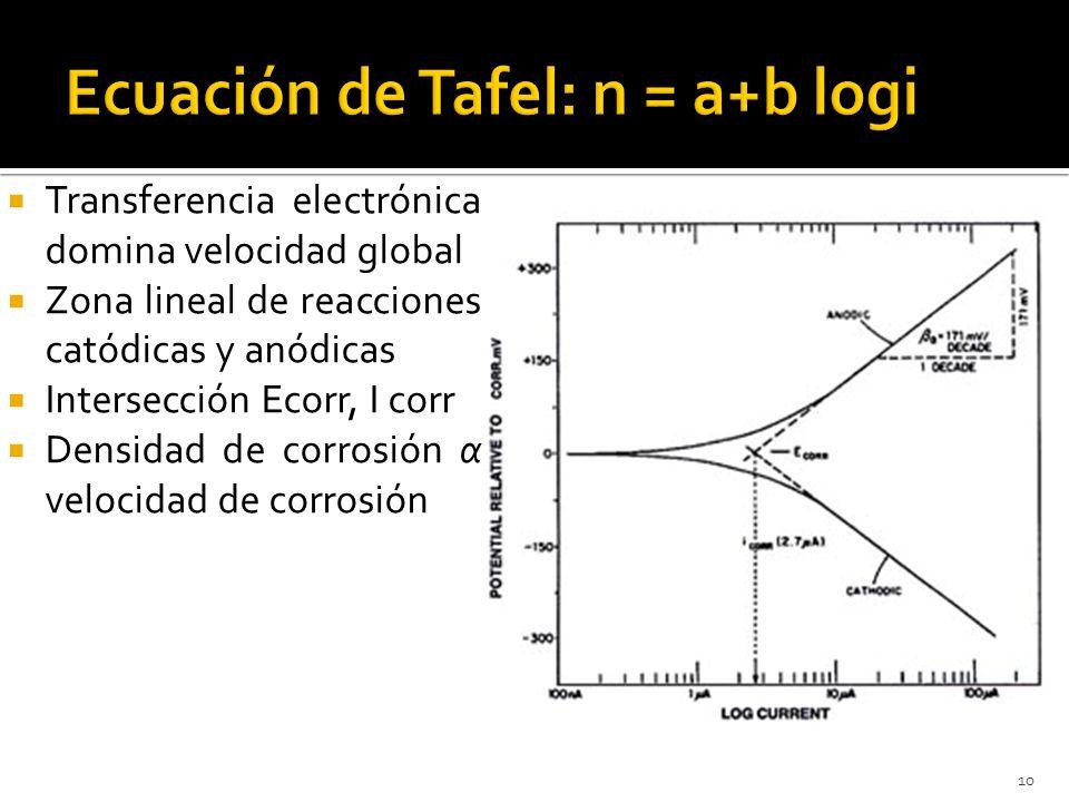 10 Transferencia electrónica domina velocidad global Zona lineal de reacciones catódicas y anódicas Intersección Ecorr, I corr Densidad de corrosión α
