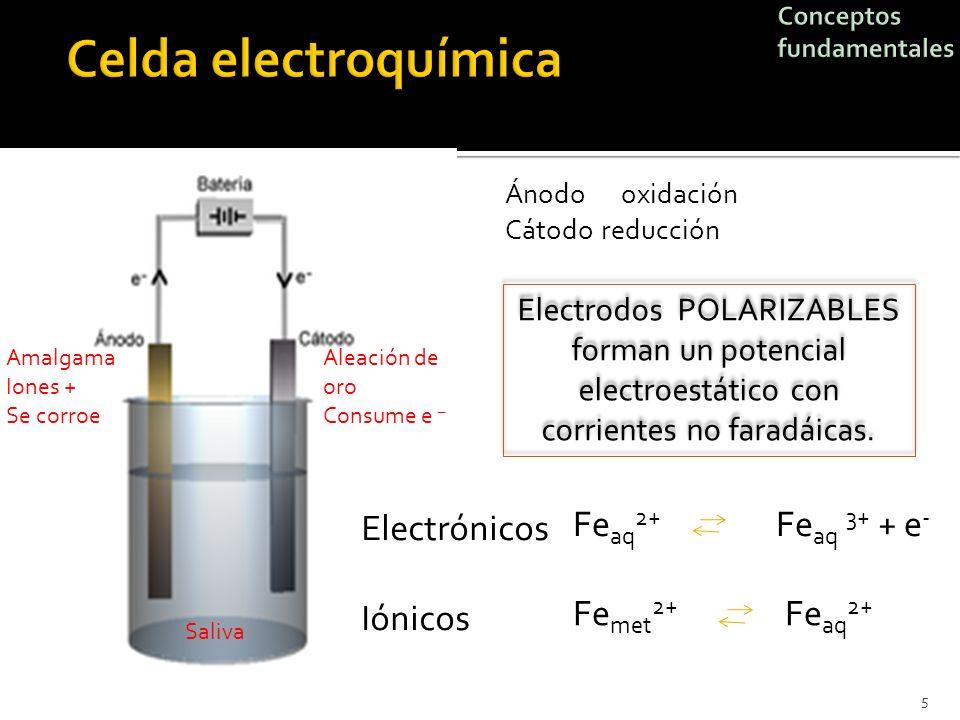 5 Amalgama Iones + Se corroe Aleación de oro Consume e – Saliva Series electromotrices. Potencial de electrodo en equilibrio y la tendencia a disolver