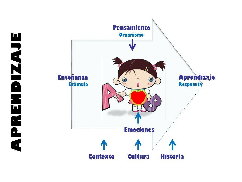 Enseñanza Estímulo Aprendizaje Respuesta Pensamiento Organismo Contexto Cultura Historia Emociones APRENDIZAJE