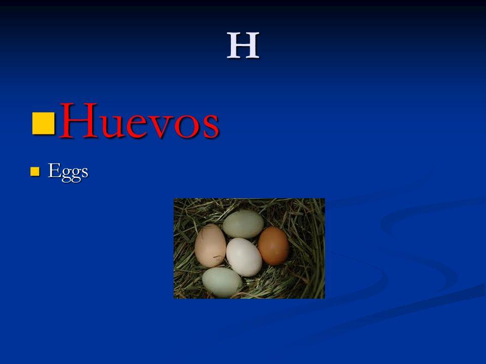H Huevos Huevos Eggs Eggs