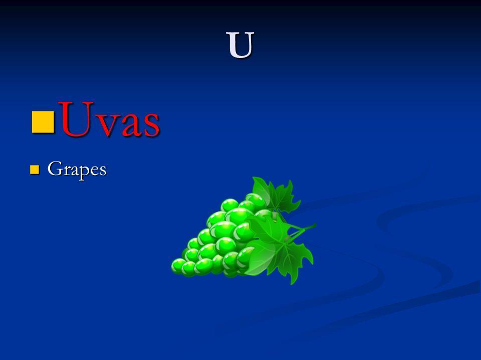 U Uvas Uvas Grapes Grapes