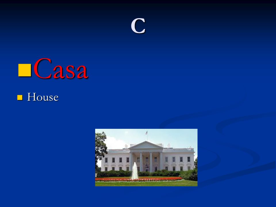 C Casa Casa House House