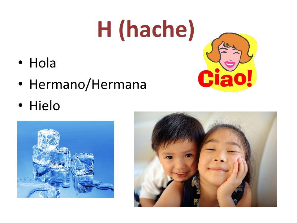 H (hache) Hola Hermano/Hermana Hielo