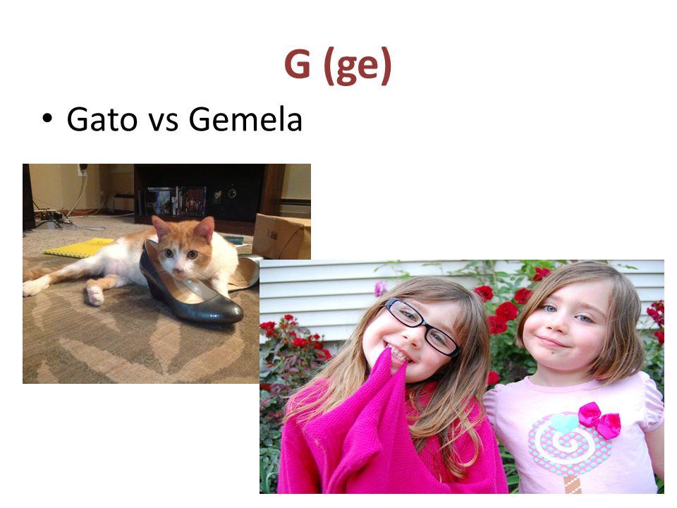G (ge) Gato vs Gemela