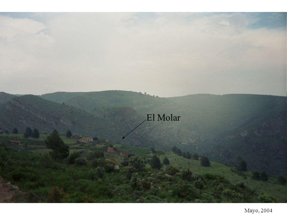 Mayo, 2004. El Molar Mas dElvira Recorte de la foto anterior