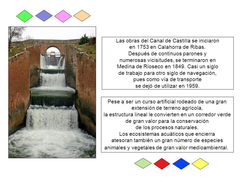 Las primeras noticias sobre un Canal que permitiera el transporte de cereales entre la meseta y el puerto de Santander datan de finales del siglo XVI.