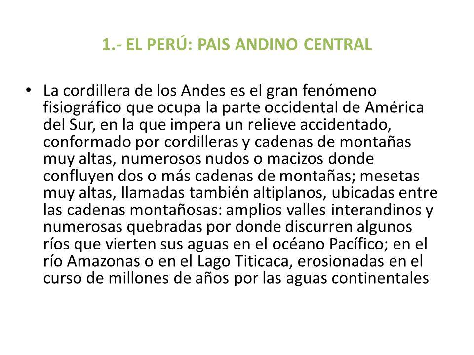 1.- EL PERÚ: PAIS ANDINO CENTRAL La cordillera de los Andes es el gran fenómeno fisiográfico que ocupa la parte occidental de América del Sur, en la q