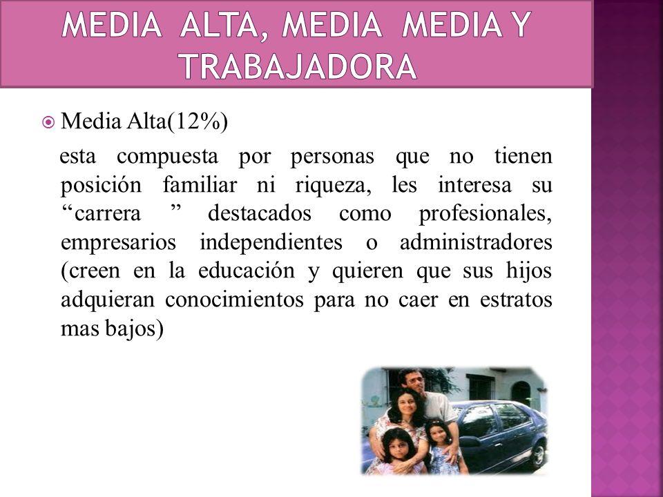 Media Alta(12%) esta compuesta por personas que no tienen posición familiar ni riqueza, les interesa su carrera destacados como profesionales, empresa