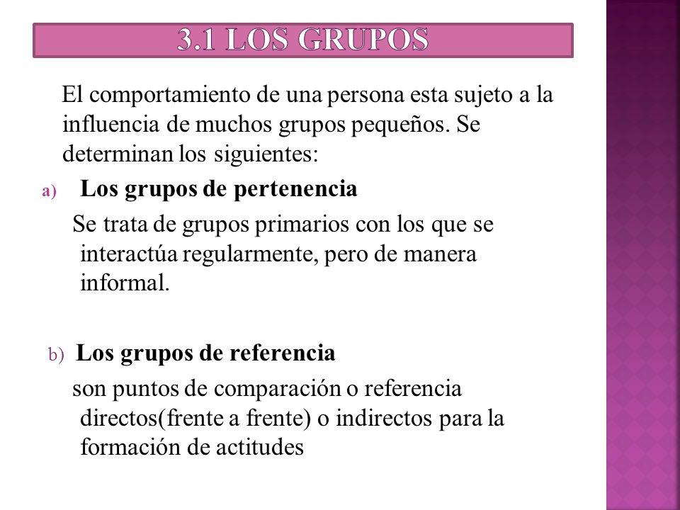 El comportamiento de una persona esta sujeto a la influencia de muchos grupos pequeños. Se determinan los siguientes: a) Los grupos de pertenencia Se