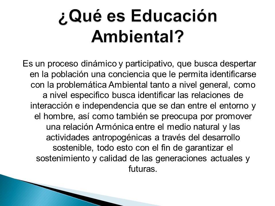 Es un proceso dinámico y participativo, que busca despertar en la población una conciencia que le permita identificarse con la problemática Ambiental