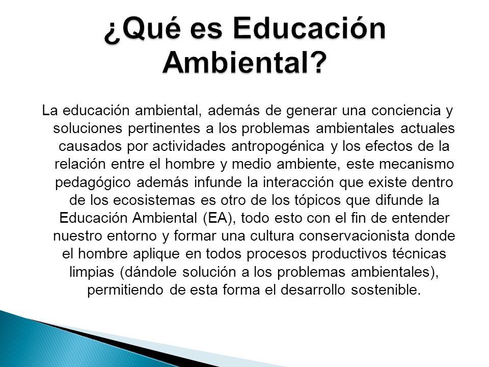 La educación ambiental, además de generar una conciencia y soluciones pertinentes a los problemas ambientales actuales causados por actividades antrop