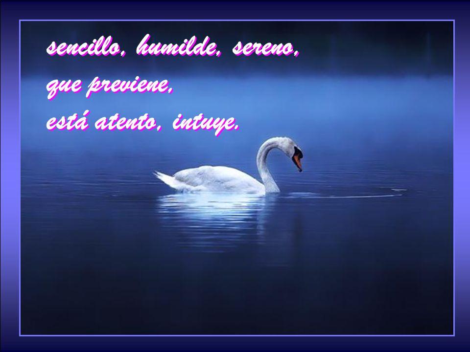 sencillo, humilde, sereno, que previene, está atento, intuye.