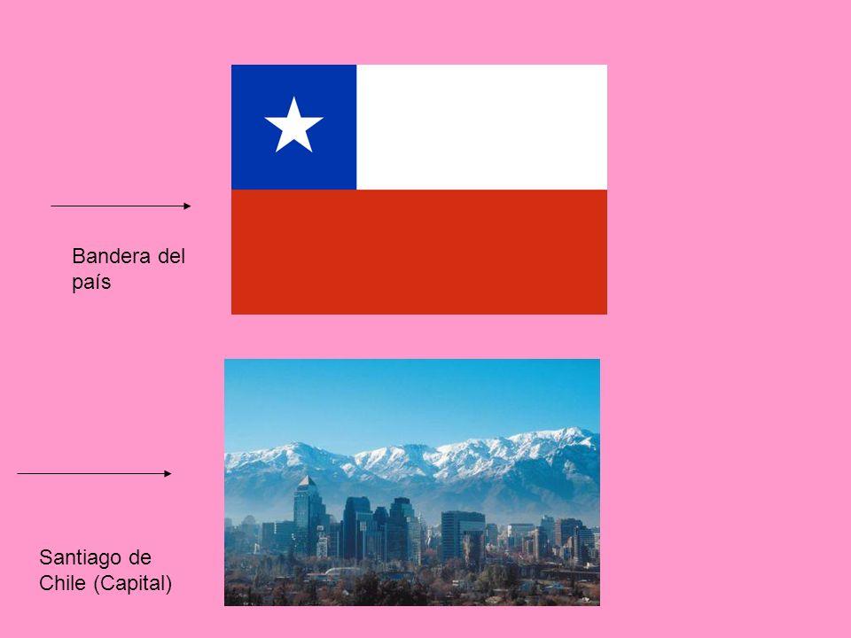 Bandera del país Santiago de Chile (Capital)